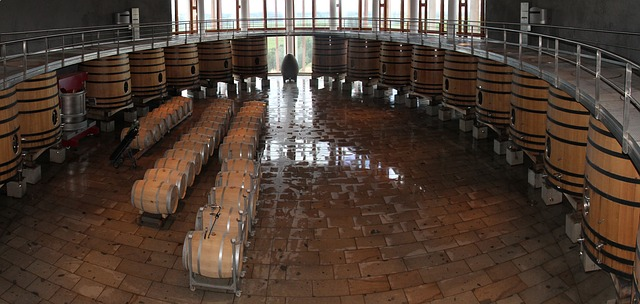 things-to-do-in-chile-winery