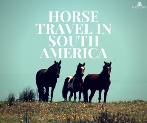 Horse-Travel-in-South-America