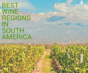 best-wine-regions-in-south-america