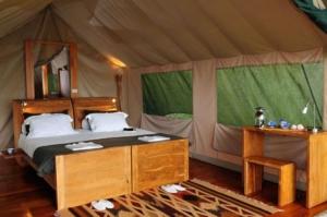 galapagos-glamping-safari-camp-tent