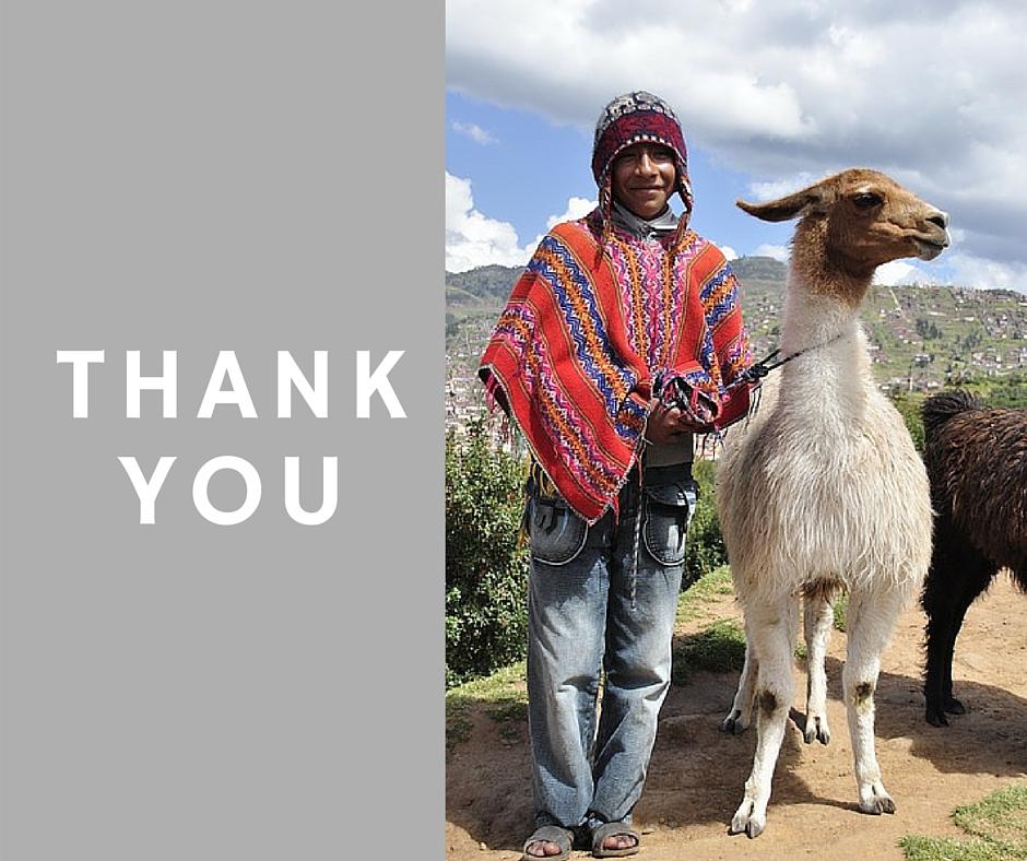thank-you-boutique-south-america-peru-llama
