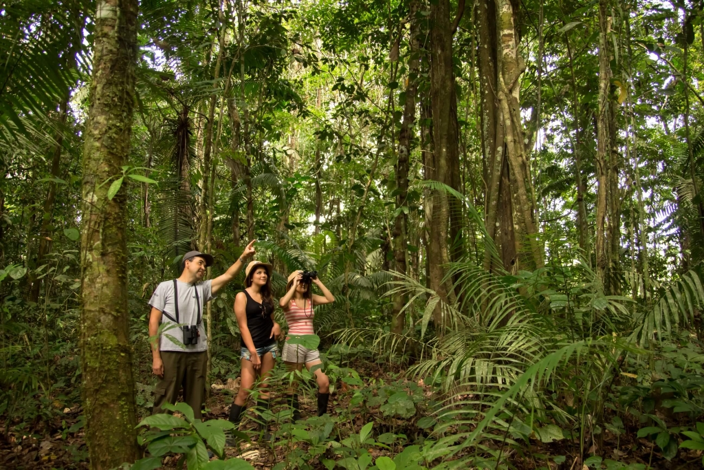 luxury-amazon-cruises-jungle-tour-hikes-anakonda